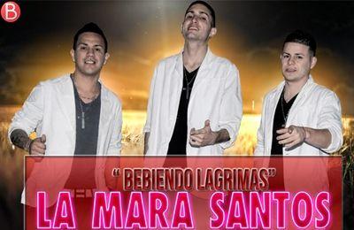 la mara santos 2013