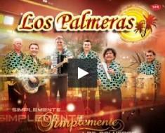 simplemente los palmeras cd 2014